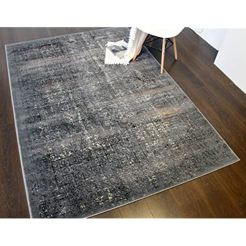 """A2Z Rug Shadow Transitional Contemporary  Light Grey 120x170cm - 3'11""""x5'7""""ft Luxury Vintage Area Rugs"""