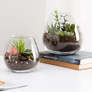 Set of 2 Decorative Modern Round Clear Glass Plant Terrariums/Ornament Display Flower Vases