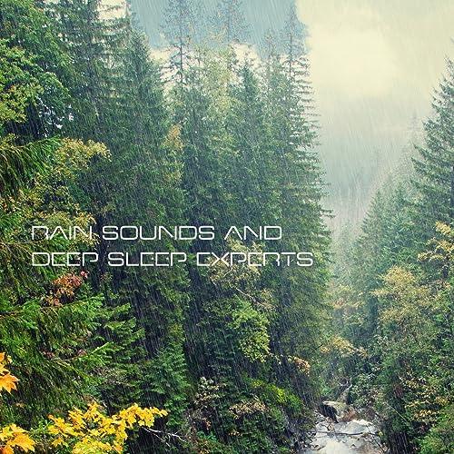 Rain Sound (Beautiful Dreams) by The Rain Sound Experts on Amazon