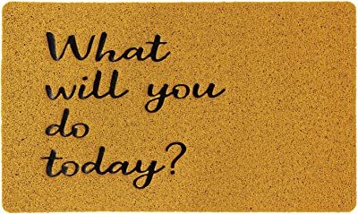 SPICE OF LIFE(スパイス) 玄関マット ふかふかテラスマット What will you do today? Sサイズ 75×45cm PVC製 耐水耐候 滑り止め付き カット可能 CWLN2931