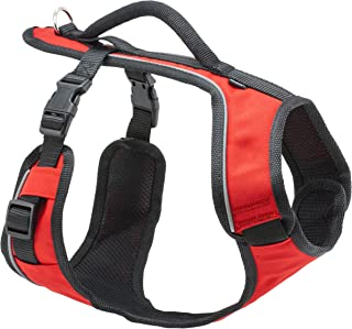 PetSafe EasySport Harness, Adjustable Padded Dog Harness with Control Handle and Reflective Piping, From the Makers of the Easy Walk Harness
