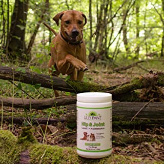 Natural Glucosamine for Dogs 500mg Hip and Joint Supplement with Chondroitin, Yucca Schidigera, Omega 3 & 6 and Vitamins C & E - 90 Chews - Arthritis Pain Relief, Mobility, Anti-inflammatory