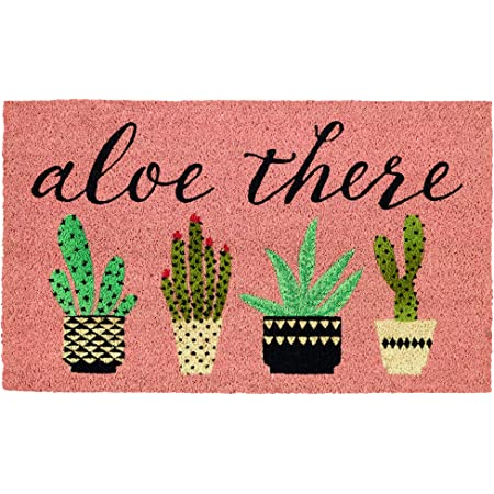 DII Natural Coir Doormat, Decorative Hello Mat, Aloe There, 18x30