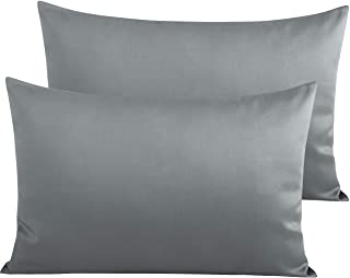 Two Pillowcases Pillowcase for Pillow Memory Removable Zip Liner Aloe Vera