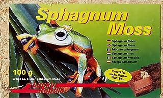 Lucky Reptile SM-100 Mech do Terrarium, 100 g