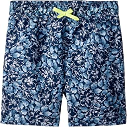 Blue Tropical Print