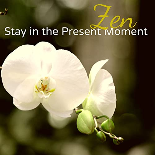 Lotus Flower Yoga Song By Asian Meditation Music Collective On
