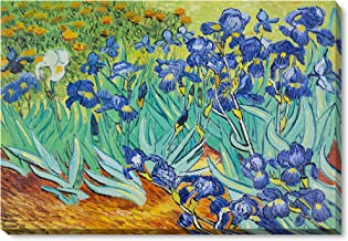 """overstockArt Irises with Gallery Wrap Framed Oil Painting, 34"""" x 22"""", Multi-Color"""