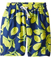 Oscar de la Renta Childrenswear - Painted Lemons Classic Swim Shorts (Toddler/Little Kids/Big Kids)