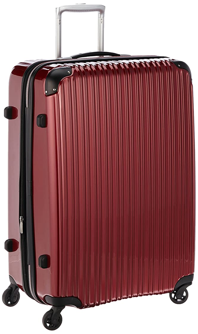 持っている長さインシュレータ[シフレ] 拡張スーツケース エスケープ 65cm 90-102L 4.7kg 預入157㎝サイズ TSAロック 102L 72 cm ESC2007-65
