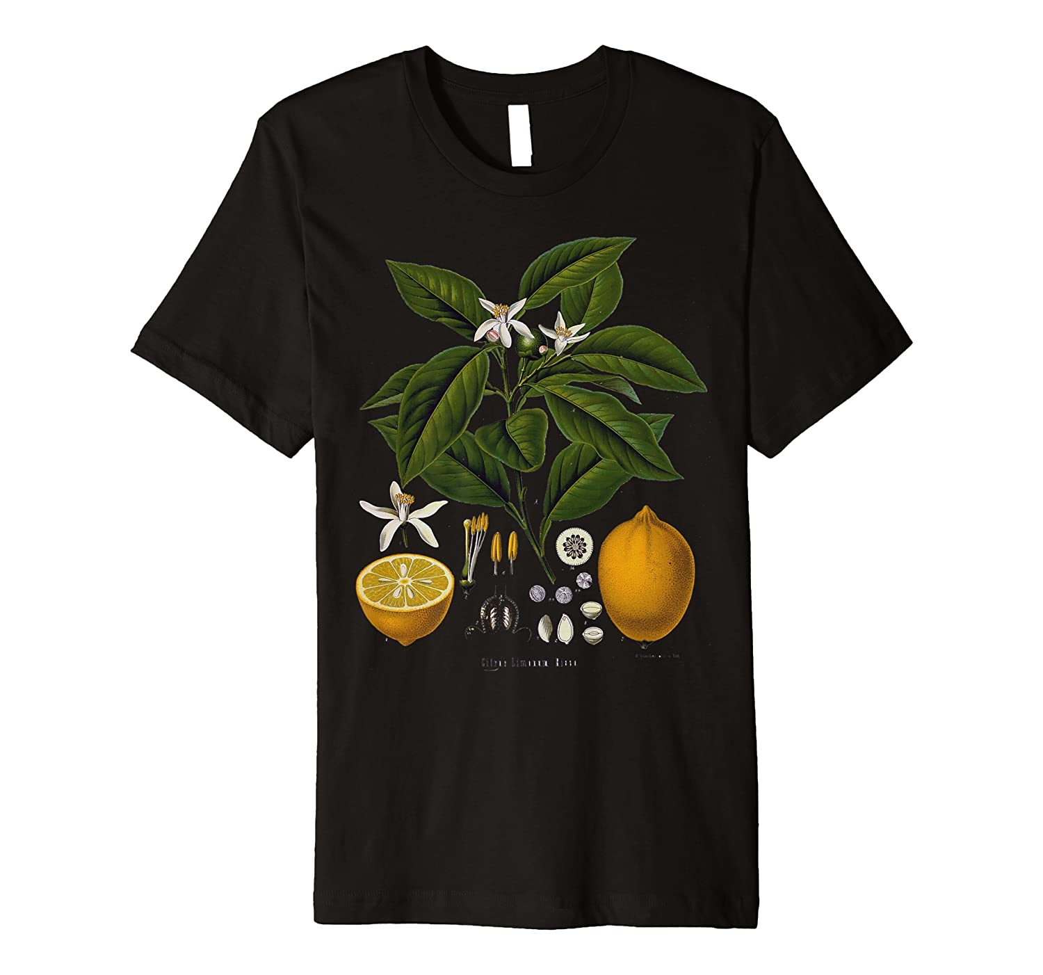 Lemon Plant botanical Fruit Tree For Gardeners gift Premium T-Shirt