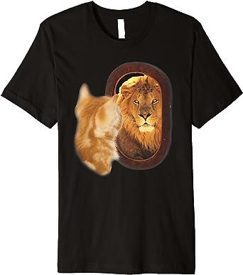 Mirror cat lion Lion
