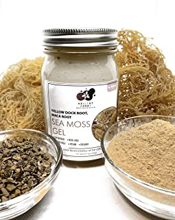 Sea Moss Gel (16 oz) with Raw Gold Seamoss, Yellow Dock Root, and Maca Root with All Natural Essential Vitamins, Minerals ...