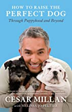 cesar millan training book