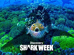 Best shark week megalodon video Reviews