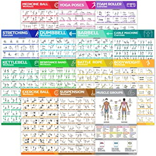 [14-PACK] Laminated Large Workout Poster Set - Perfect Workout Posters For Home Gym - Exercise Charts Incl. Dumbbell, Yoga...