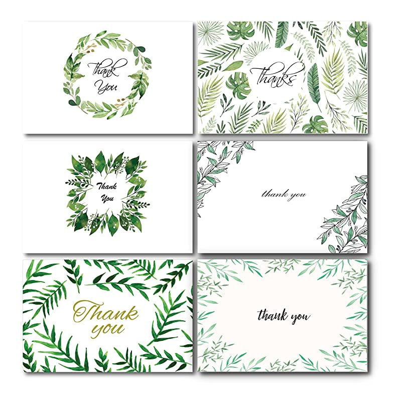 Nature Green Botanic Thank You Greeting Cards Set 36 Count Set Leaves Floral Blank on the Inside, 6 Foliage Designs w/Envelopes | 4
