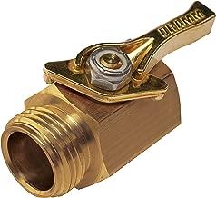 dramm 12353 valve