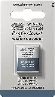 Winsor & Newton Professional Water Colour Paint, Half Pan, Payne's Gray