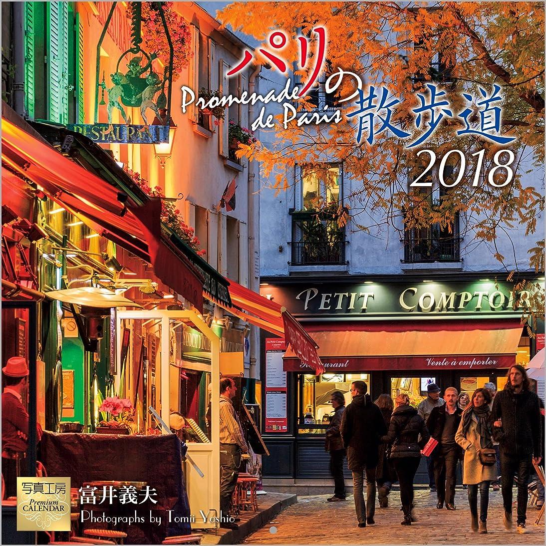 国籍水を飲む親愛なパリの散歩道 2018年 カレンダー 壁掛け D-4 (使用サイズ 594×297mm)