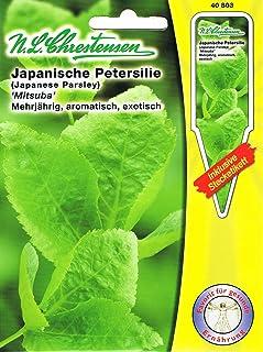 Japanische Petersilie 'Mitsuba' Asia Salate