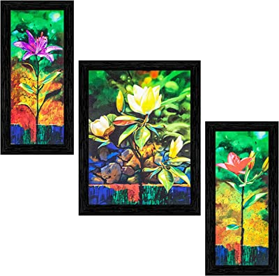 Indianara Set of 3 Multi Colored Flowers Framed Art Painting (3074BK) without glass 6 X 13, 10.2 X 13, 6 X 13 INCH