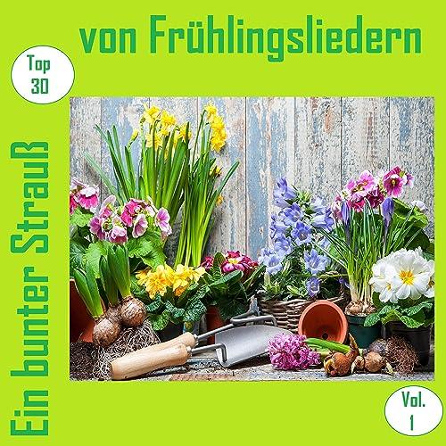 Guten Morgen Liebe Sonne By Uschi Bauer On Amazon Music