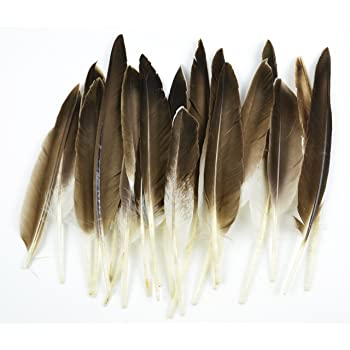 Touch of Nature 22-Piece Duck Wing Quills for Arts and Crafts, 8-Inch, Natural/Grey