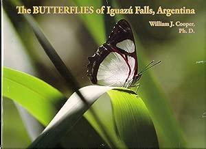 iguazu falls butterflies