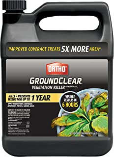 Ortho GroundClear Vegetation Killer Concentrate2