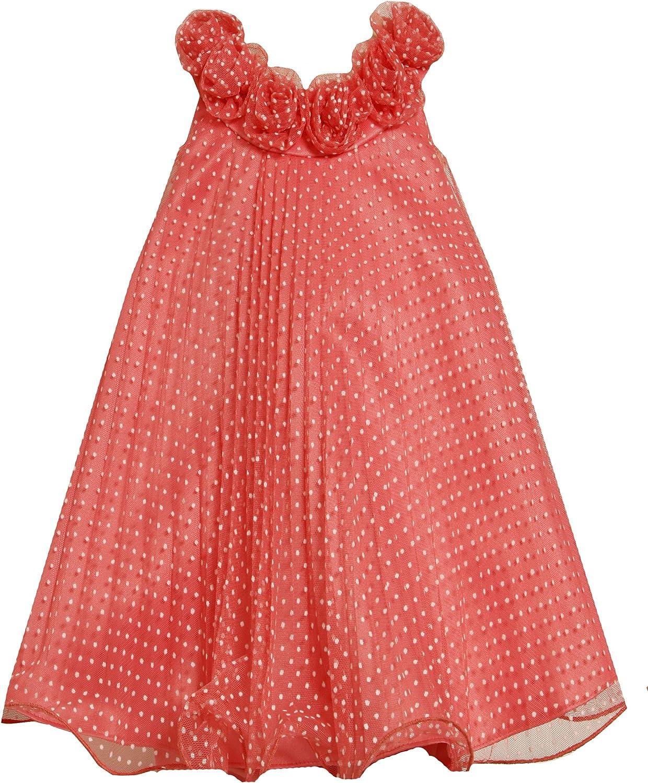 Bonnie Jean Little Girls' Crystal Pleat Mesh Dress