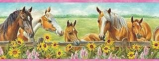 Chesapeake BBC92073B Harmony Horses Sunflowers Portrait Wallpaper Border, Green
