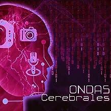 ondas cerebrales para estudiar