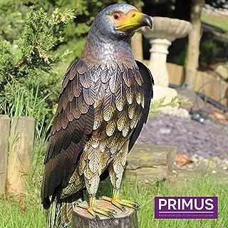 Amazon.es: Primus - Animales / Esculturas y estatuas de jardín: Jardín