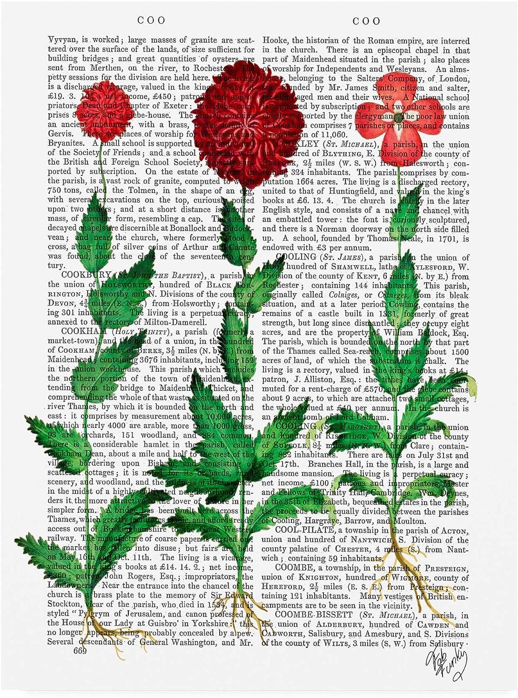 Trademark Fine Art Italian Carnation 2 by Fab Funky, 14x19