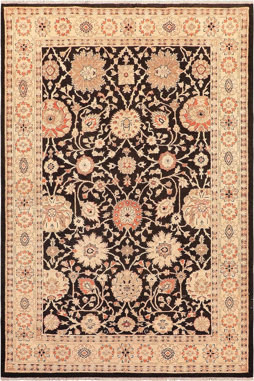Oriental Popularity Ziegler Ayesha Black Beige Wool 5'10'' Rug - Max 89% OFF x 9'0''