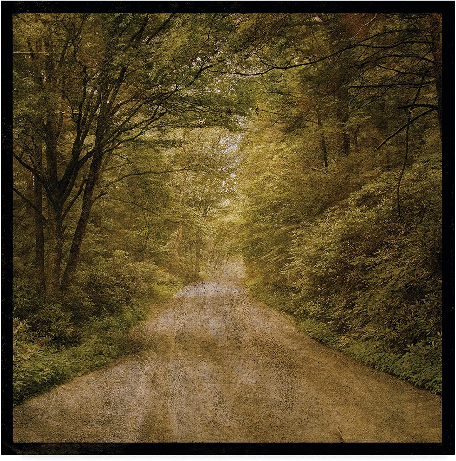 Flannery Fork Road by John W. golden, 14x14-Inch
