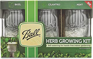 Ball 1440016022 Self-Watering Herb Growing Kit, Clear