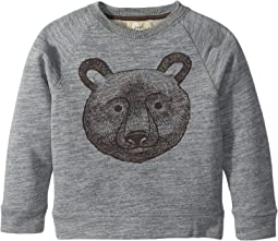 PEEK - Bear Sweatshirt (Toddler/Little Kids/Big Kids)