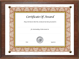 Award Plaque 13