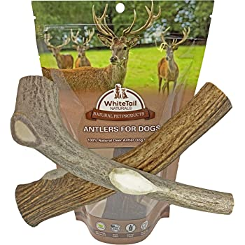 WhiteTail Naturals | 2 Pack Large | Deer Antlers for Dogs, All Natural Dog Chews | Grade A Antler Chew Bones | Crafted in USA