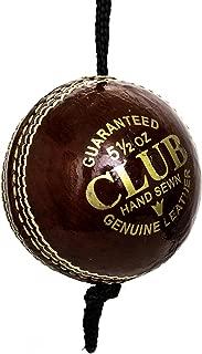 Pro Impact Cricket Balls