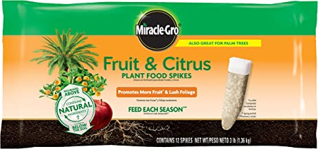 Miracle-Gro 4852012 Fruit & Citrus Plant Food Spikes-Set of 12