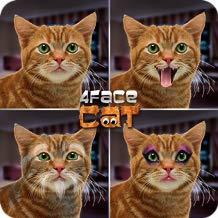 4Face Cat