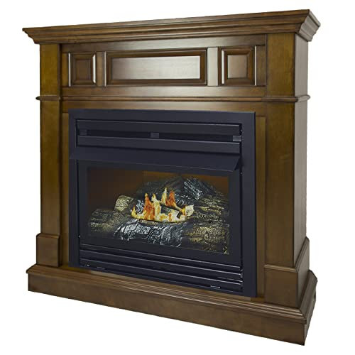 Ventless Natural Gas Fireplaces Amazon Com