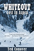 Whiteout: Lost In Aspen