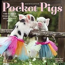 Best pocket pigs calendar 2018 Reviews