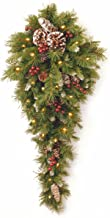 National Tree Company National Tree 3 Foot Frosted Berry Teardrop with 50 Warm White Battery Operated LED Lights (FRB-3TD...