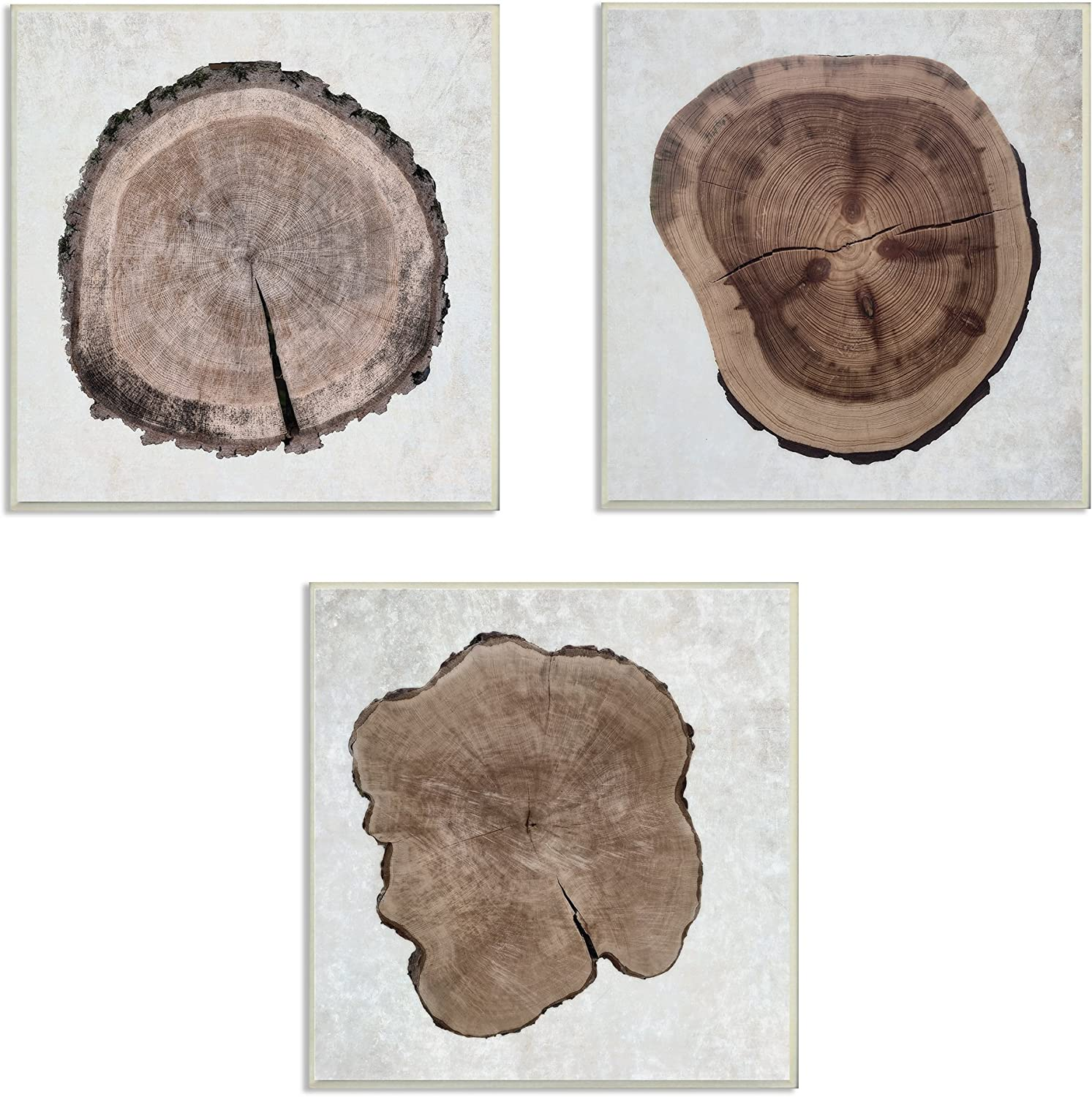 Baltimore Mall Stupell Home Décor Tree Ring Triptych Ca Stretched Cross Section Wholesale