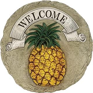 Best pineapple yard art Reviews